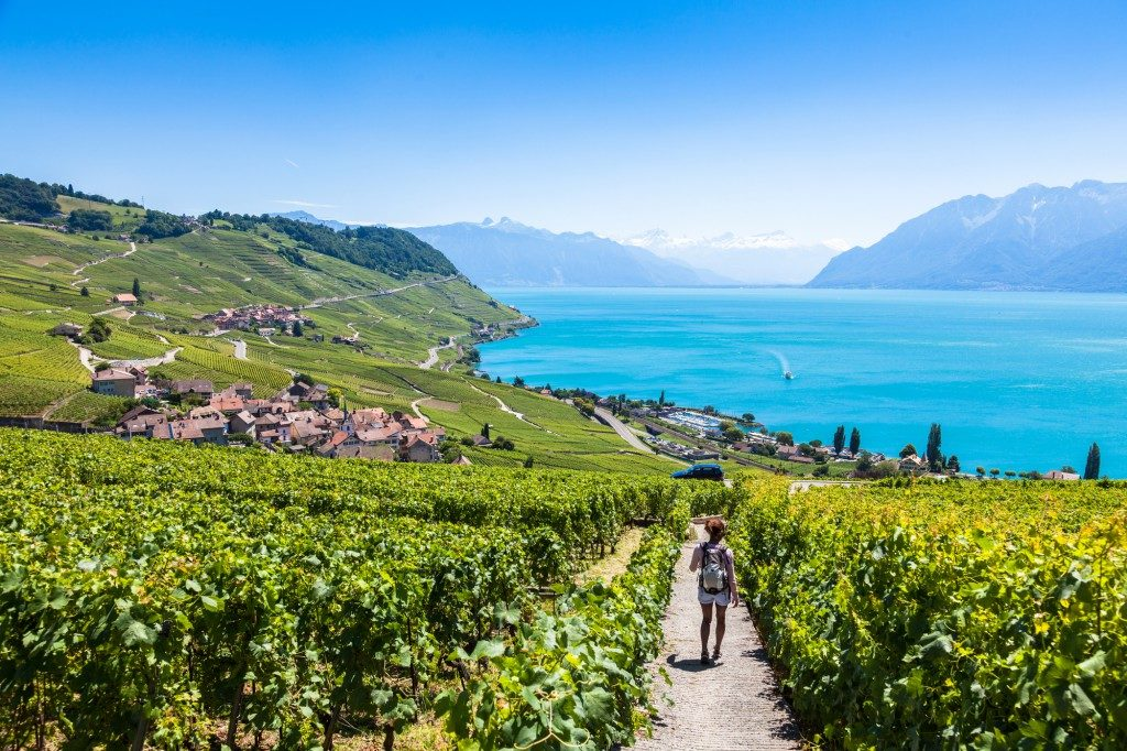 lavaux copyright blog.visionapartments.com